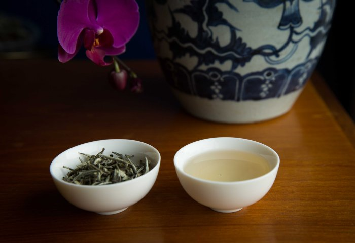 All you need to know about White Tea